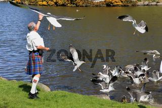 Edinburgh, Moewenfuetterung im Schottenrock