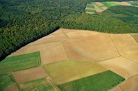 Aerial view of autumnal agricultural land