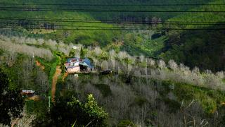 panorama, Dalat countryside, Vietnam, hill, mountain
