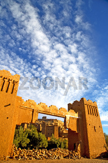 africa    histoycal maroc  old plant cloudy  sky