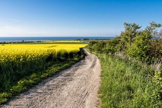 Feldweg in der Nähe von Bastorf
