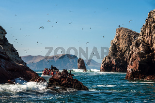 Ballestas Islands, Paracas National Reserve. The very first Marine Conservation centre in Peru, refer to the prolific wildlife and the great scenery as the Galapagos of Peru