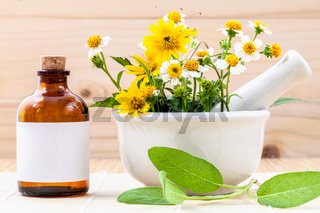 Alternative health care fresh herbal ,oil and wild flower with mortar on wooden background.