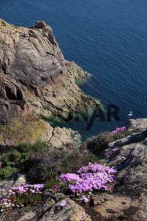 Steile Klippen an der Kueste von Jersey