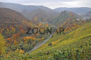 Blick auf Burg Are in Altenahr, Herbstimpressionen, Rheinland-Pfalz, Deutschland, Europa