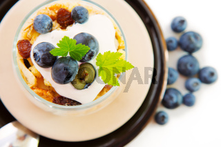 Fresh Yogurt with blueberries .
