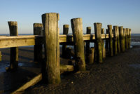 Wooden Pier in Wyk