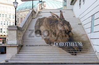 Large rabbit painted on the stairs