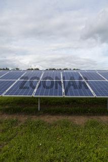 Solarzellen in einem Solarpark auf grüner wiese