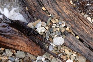 Holz und Steine am Meer