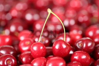Nahaufnahme Kirschen Früchte