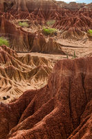 Big red sand stone cliff in front of dry hot tatacoa desert with plants, huila
