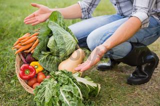 Handsome farmer with basket of veg