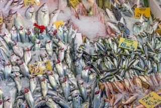 Großes Sortiment an Fischen auf einem Markt in Istanbul
