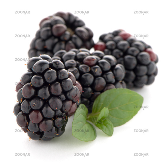 Blackberries with leaves