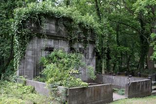 Alter Friedhof Schwerin