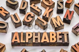 alphabet word typography in wood type