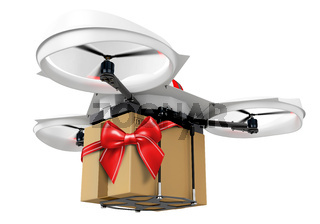 3d delivery drone with a gift  package