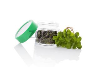 Mint, culinary aromatic herbs.