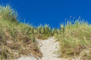 Sanddünenlandschaft-16