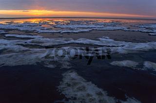 Sonnenuntergang im Winter an der Nordseekueste / Meldorfer Bucht  -  Schleswig-Holstein
