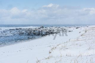 Schneefall am Strand, Eggum Naturreservat, Vetsvagoy, Lofoten, Norwegen