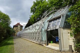 Gewaechshaus auf der Prager Burg