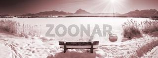 Panorama Landschaft vom Hopfensee im Winter