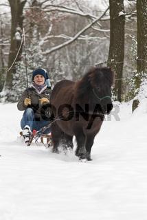Schlittenfahrt mit Pony