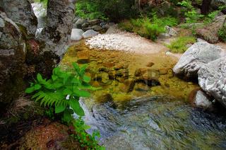 Flusslandschaft Aitone - Korsika