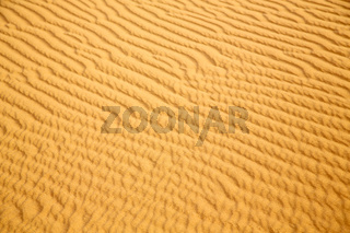 africa the   dune in   sahara morocco desert
