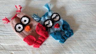 owl puppet for children day