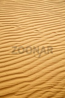 brown sand dune in the sahara morocco desert