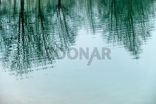 Bäume spiegeln  sich im Wasser