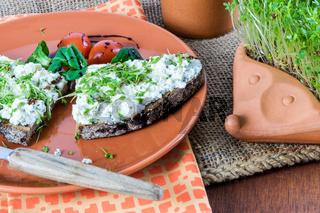 Selbstgezogene Gartenkresse als gesunder Vitaminlieferant