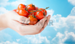 close up of woman hands holding cherry tomatoes