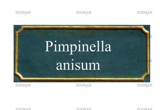shield pimpinella anisum