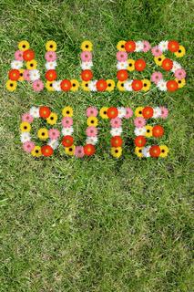 Alles Gute Karte wünschen Geburtstag aus Blumen Blume Gras Wiese