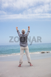 Rear view of senior man standing on the beach