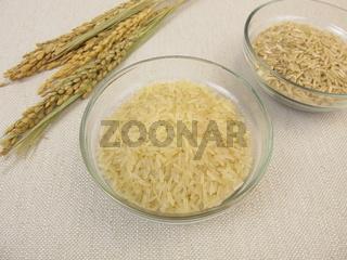 Ungekochter brauner und weisser Reis