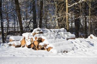 Holzstapel im Winter_003