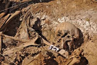 Mass grave of the Spanish Civil War in Estépar, Burgos