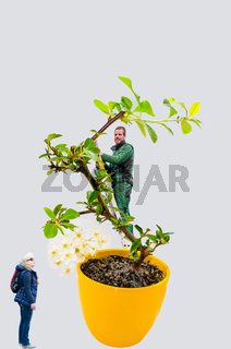 Abstract, woman and man with bonsai tree