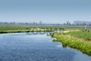 Landschaft am Dümmer See-129