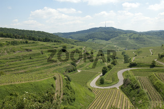Weinterrassen, Weinanbaugebiet, Weinberg, Terrassen, Kaiserstuhl