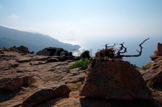Meerblick aus der 'Calanche von Piana' - Korsika