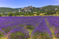 hills landscape with small town and lavender