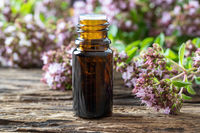 A dark bottle of essential oil with oregano twigs