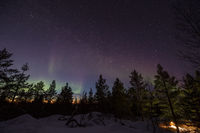 Northern lights over a forest in the hills of Inari, Finland