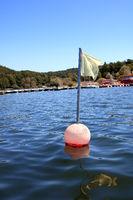 buoy on the lake